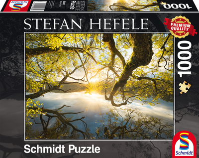 Schmidt Puzzel Omarming van Goud